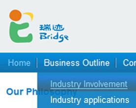 瑞迹投资公司网站设计