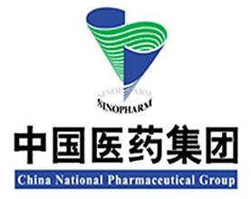 中国医药集团项目